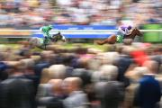 York Racecourse's Juddmonte International is rated the best race in the world
